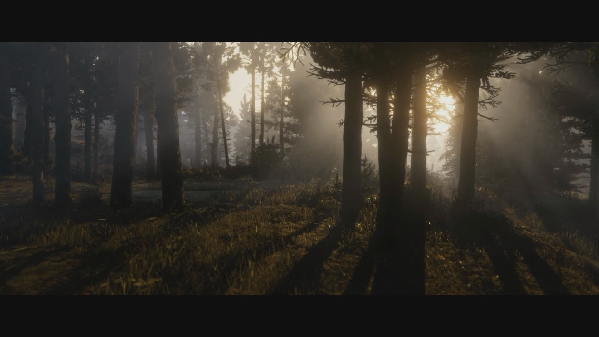 Wallpaper Fall Weather Red Dead Redemption 2 Trailer Screens Will Help You
