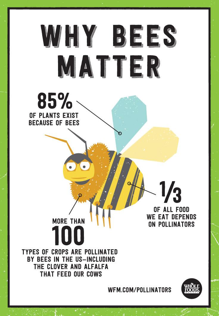 Protecting Pollinators Whole Foods Market