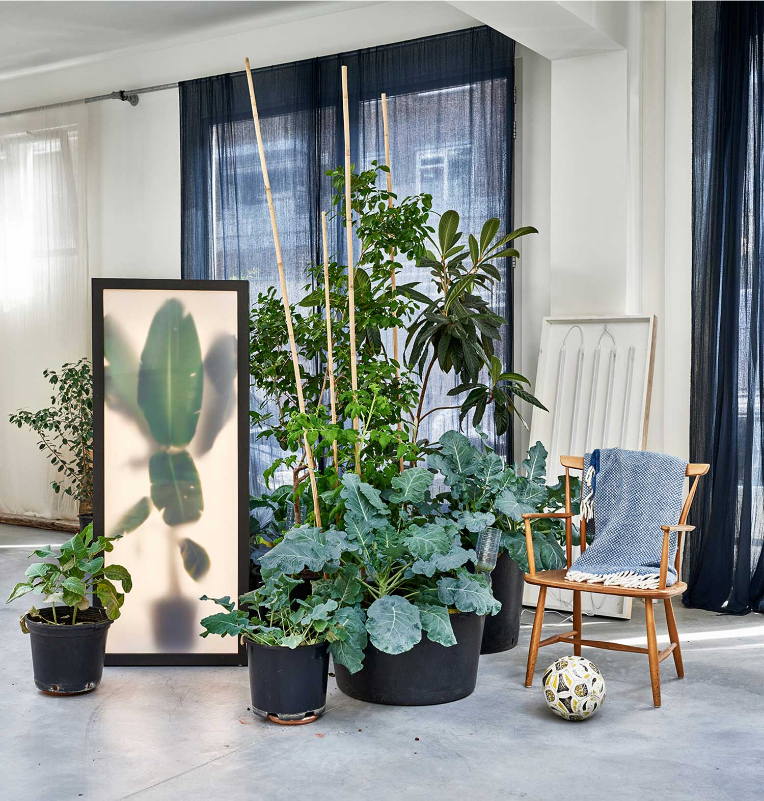 Grote Pot Woonkamer Growing Plants Indoor By Rem Atelier Yellowtrace