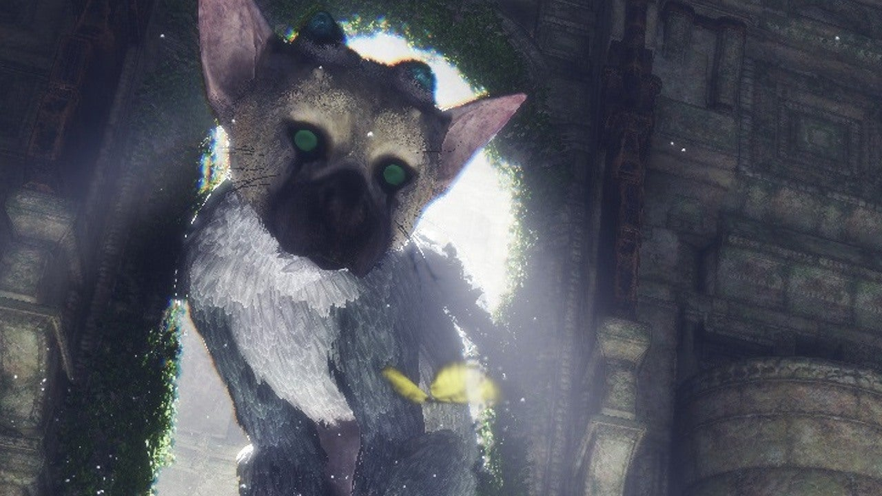 Cute Live Wallpaper Download The Last Guardian Trico Makes Alanah Melt Ign Plays