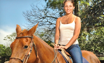 Fun-with-horses-90_grid_6
