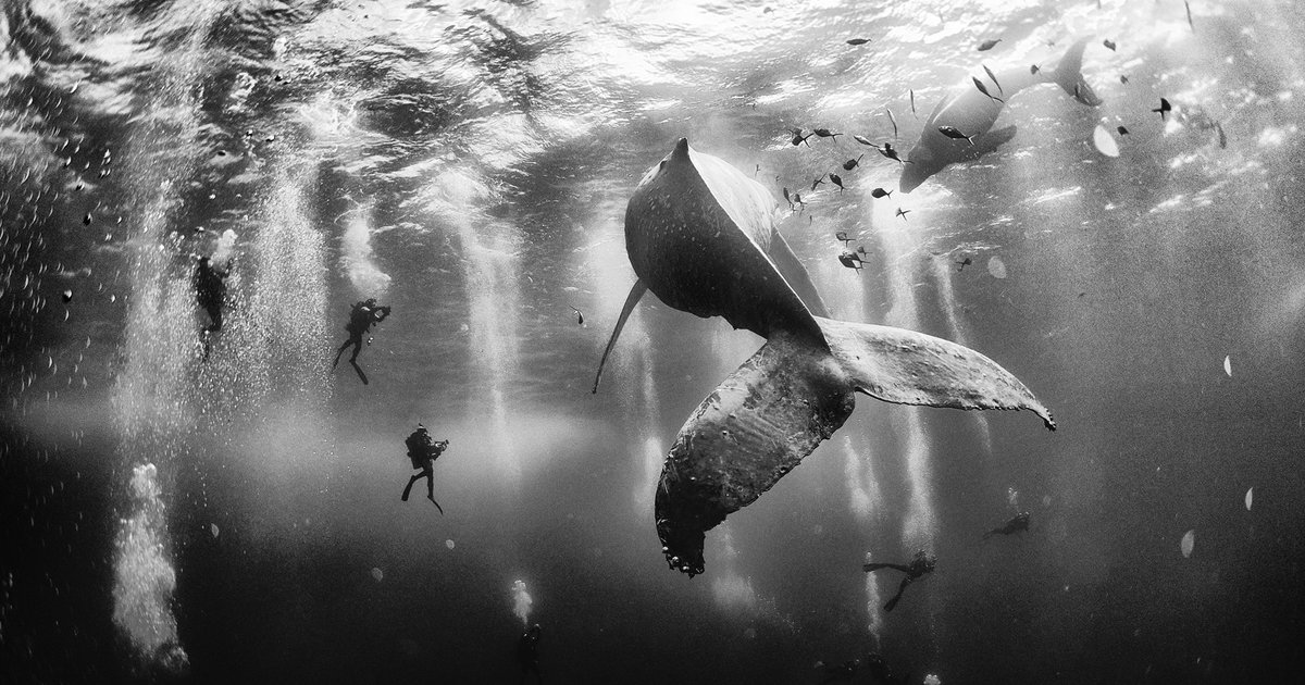 10 Striking Images From the Winners of Nat Geo\u0027s 2015 Traveler Photo - geographic preference