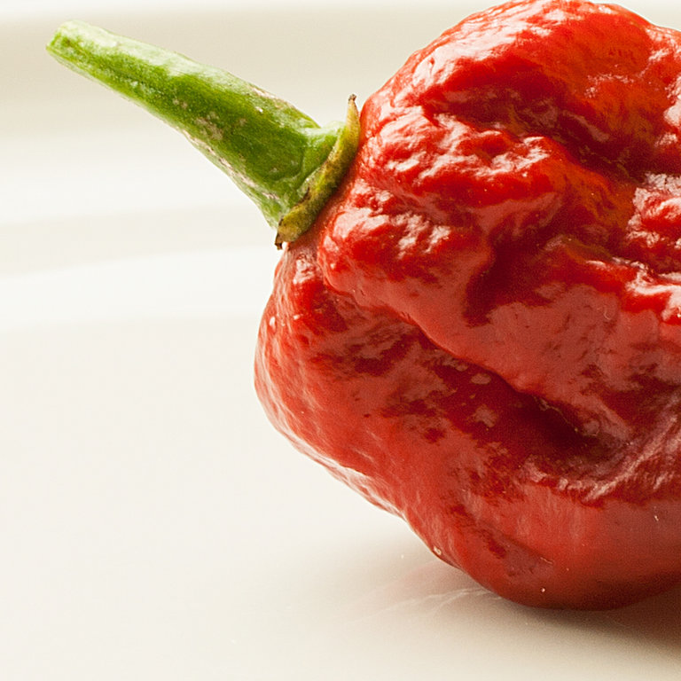 Carolina Reaper Is The World\u0027s Hottest Pepper - NowThis