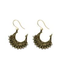 Africa shaped earrings