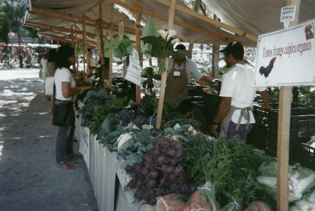 feira-organica3