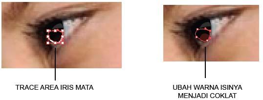 Gambar 15.8. Trace area iris dan ubah warna isinya