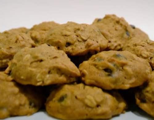 Oatmeal, Pumpkin, Chocolate Chip, Cookies, Brummel & Brown, Yogurt, Healthy, Thanksgiving, Recipe