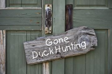 bowhunting ducks