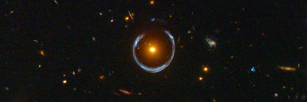 The Cosmic Horseshoe Is Not the Lucky Beacon That Astronomers Had Hoped For