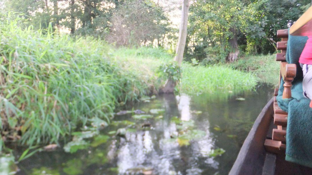 Spree Radweg 2014 - 0 (42)