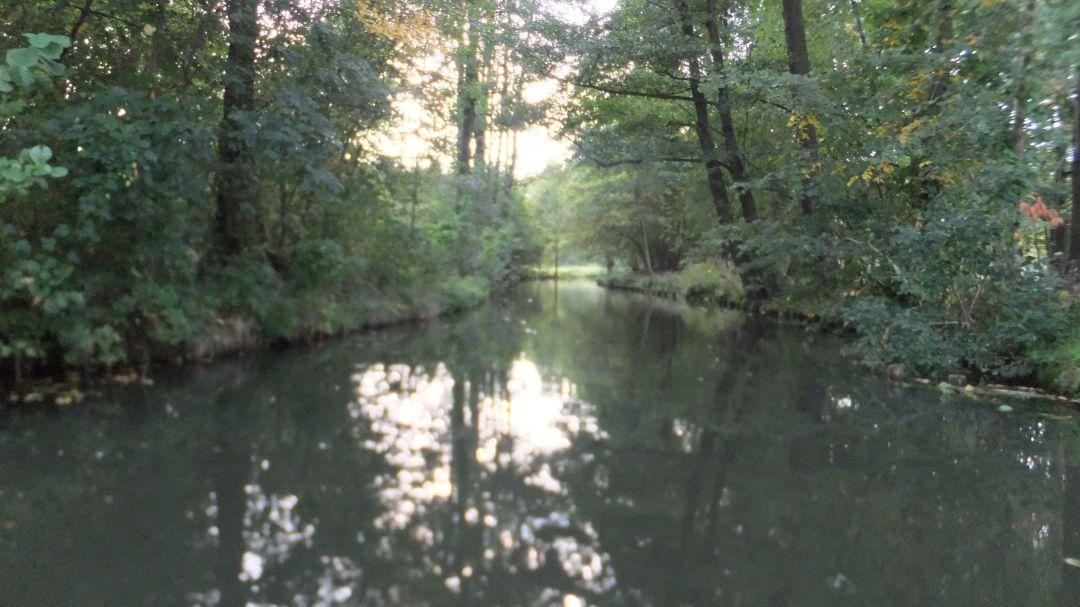 Spree Radweg 2014 - 0 (44)