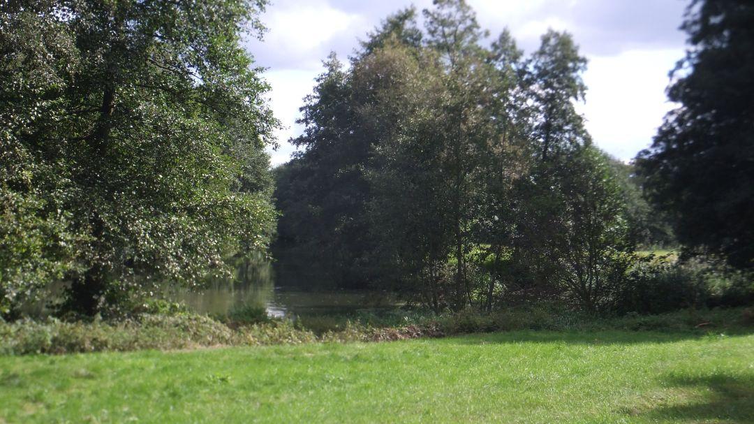 Spree Radweg 2014 - 0 (81)