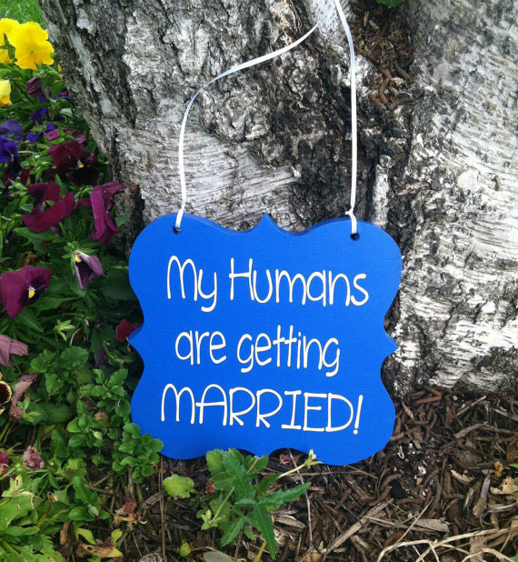 27 Brilliant Ideas to Make Your Wedding Awesome and Fun - Atchuup