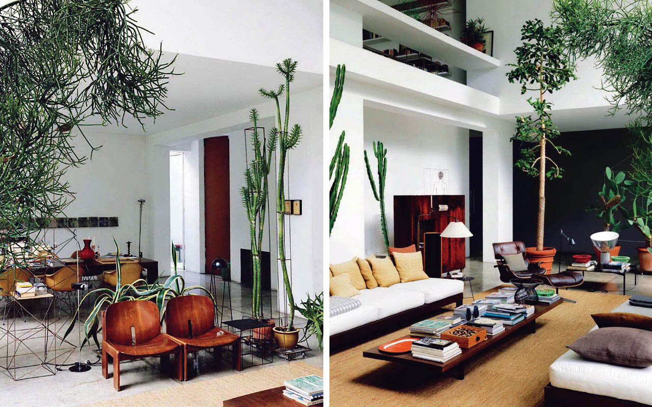 Interieur Met Hangplant Habitat Living Spaces In Shades Of Caramel 43 Mint