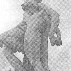 pothos-260-2