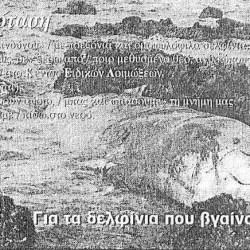 pothos-47