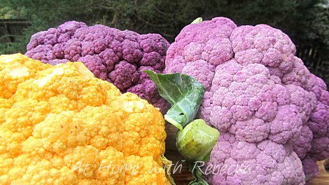 PurpleYellowCauliflower