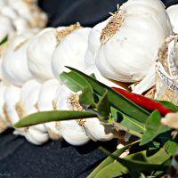 Gilroy Garlic Festival 2015 - The Great Garlic Cook-Off