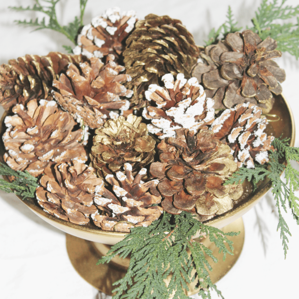 simply-seasonal-pine-cones