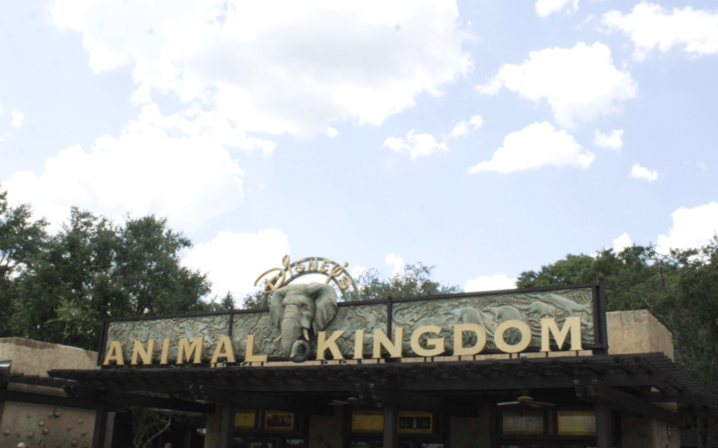 Orlando Vacation - Disney World - Animal Kindgom Park - At Home With Zan
