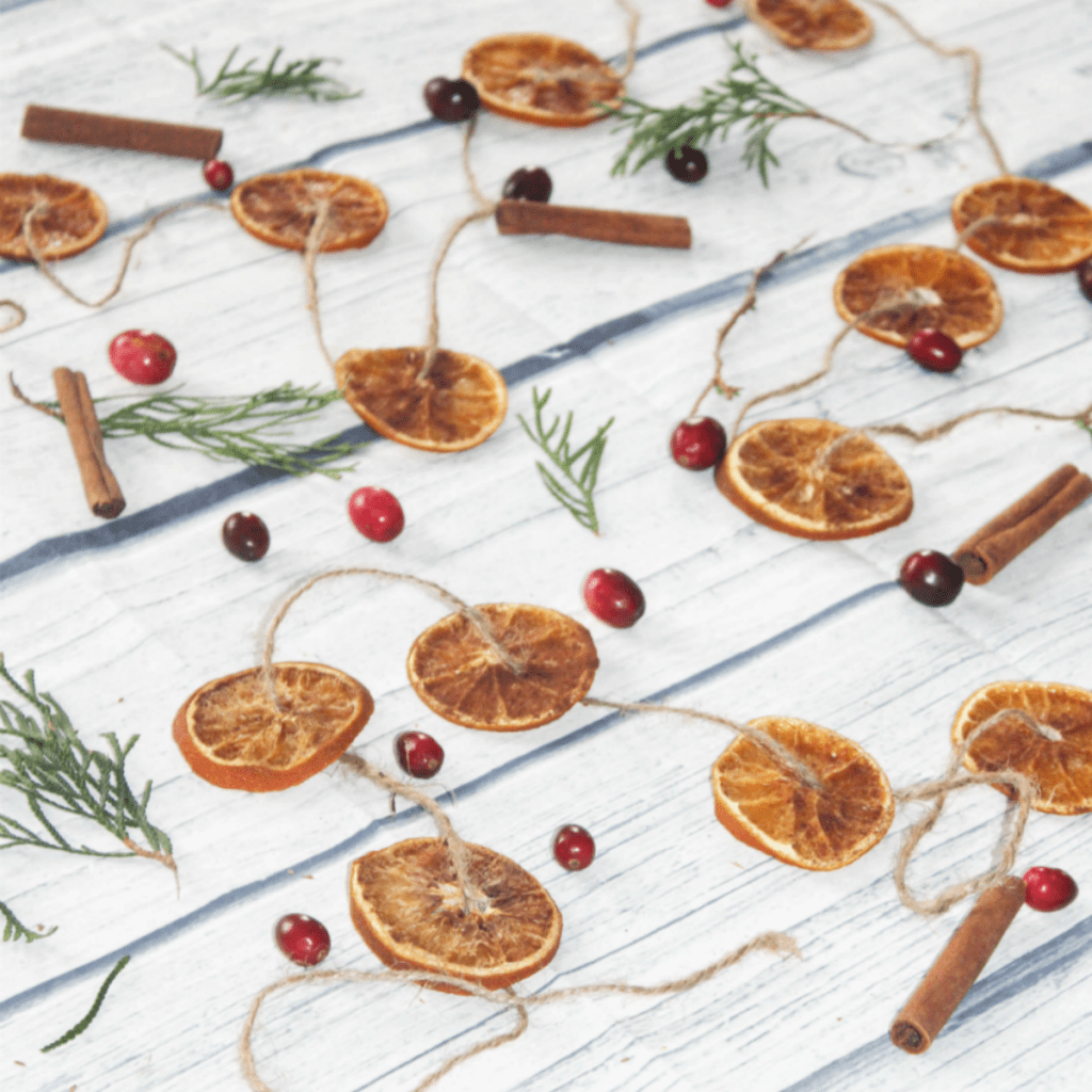 Dried Cinnamon Orange Slices - How to Dry Oranges - With Cranberries - At Home With Zan -