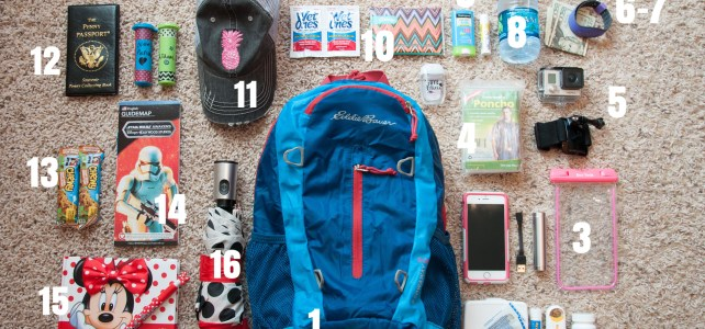 Disney Day Bag 101
