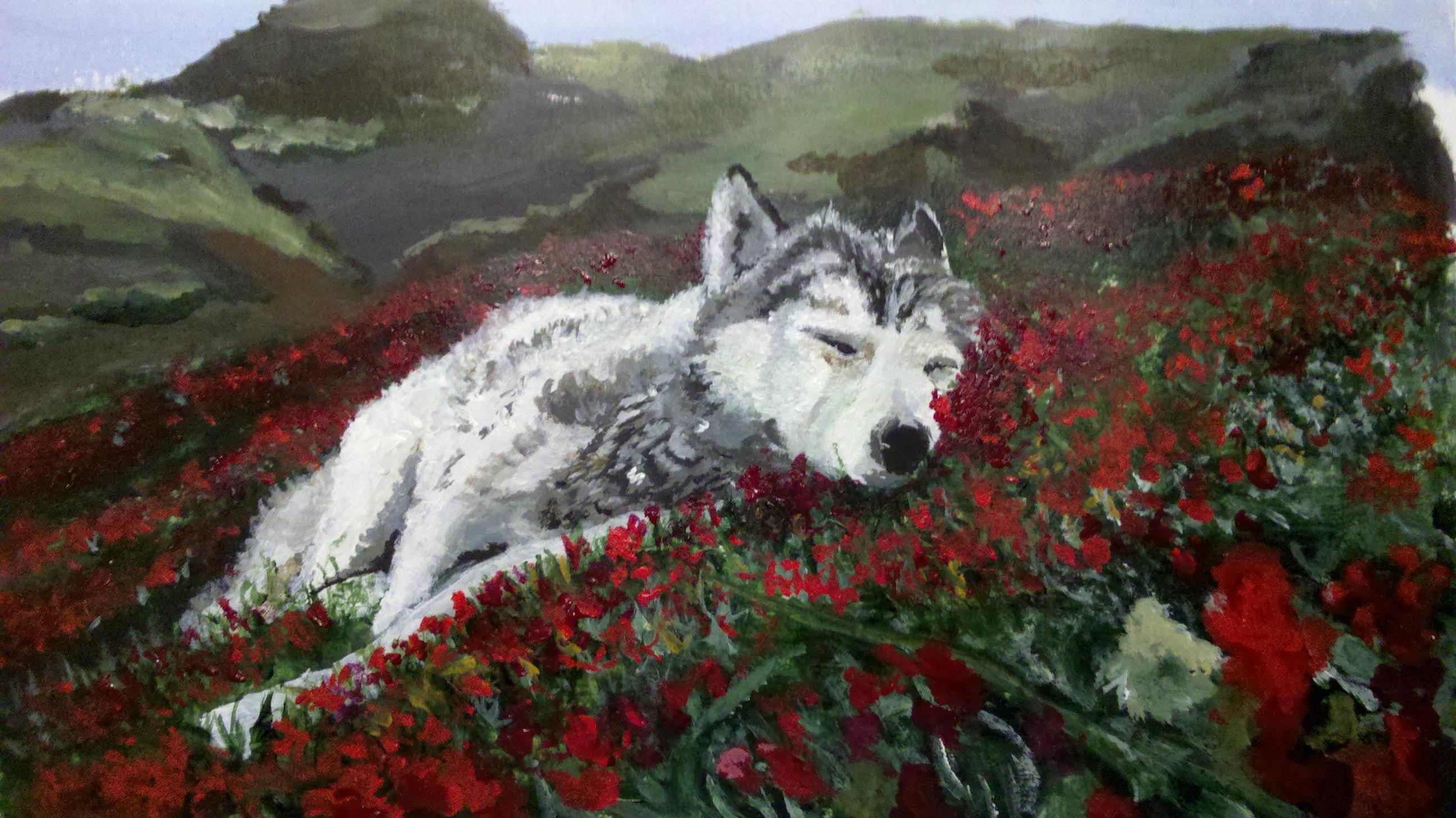 New Girl Wallpaper Full Hd Sleeping Wolf Attemptsatartistry