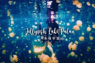 全世界最美的水母宇宙 帛琉水母湖 如同身在夢境中