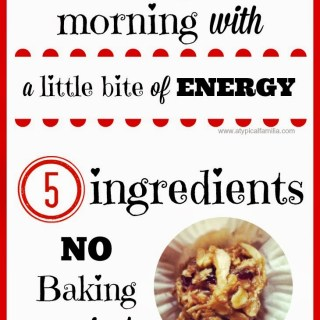 Easy to Make Energy Bite Snacks |Inspired by Smuckers Pairings