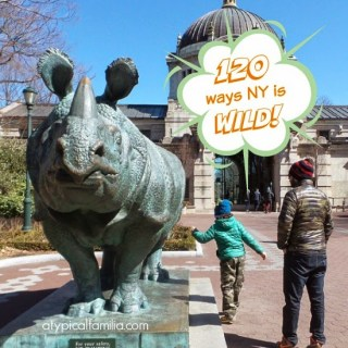 120 Wild Attractions in NY | #NYisWILD