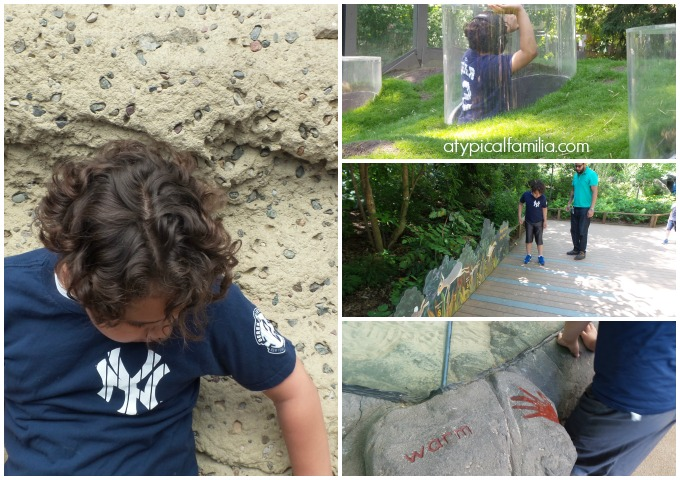 Childrens-Zoo-Bronx-Zoo-Atypical-Familia-Lisa-Quinones-Fontanez