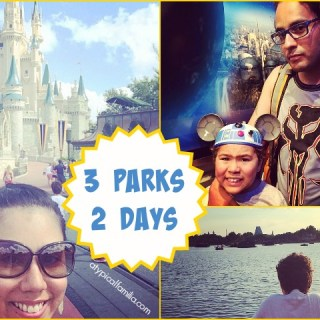 3 Parks, 2 Days: Walt Disney World Park Hopper