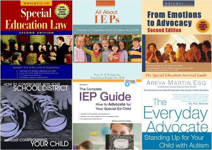 Special Education Advocate for your Child with Special Needs Autism