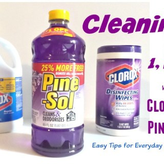 Easy Cleaning with Clorox and Pinesol