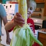 Corn on the cob, a summer staple.