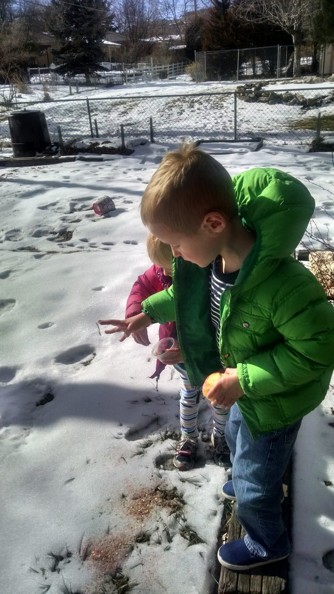 """They made """"Reindeer food"""" at Cooper's school Christmas party. When a herd of regular deer showed up in our yard the kids got very excited about sprinkling it on the snow for them."""