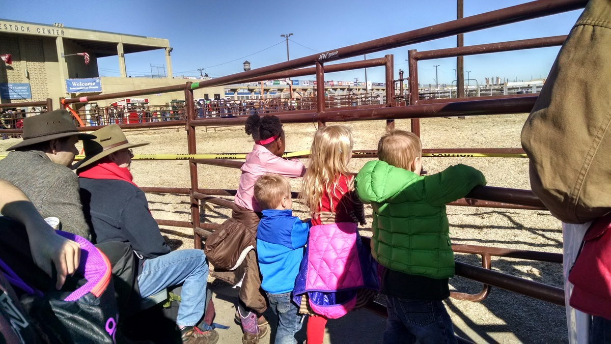 The kids watching the cow herding competition.
