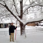 Knocking snow off the trees to preserve some of the branches.