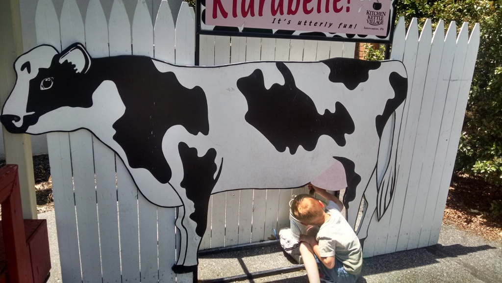 "Cooper ""milking"" a cow in Pennsylvania Dutch Country."