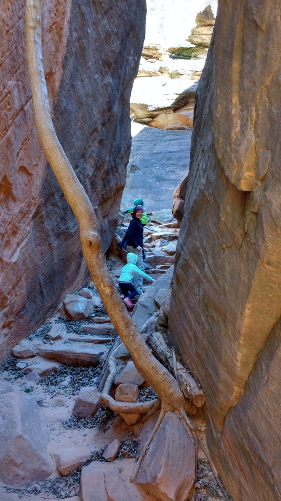 Slipping through rocks to climb to Upper Emerald Pools.