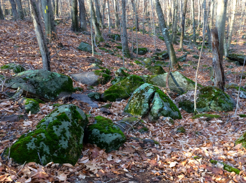 bouldery trail