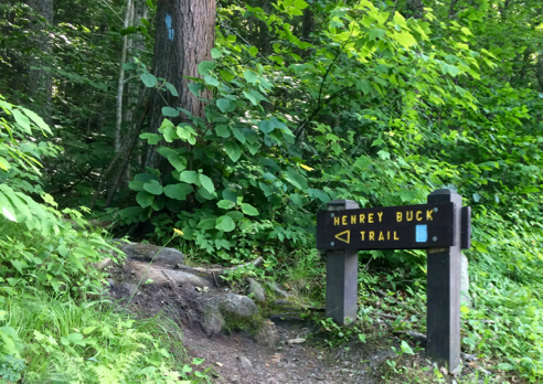 One of Two Trailheads