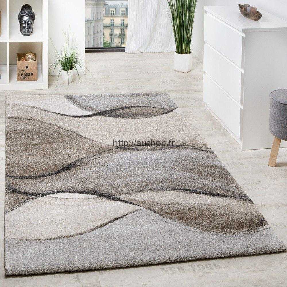 Tapis De Salon Tapis De Salon Pin Tapis Rouge On Pinterest Emejing Tapis Salon