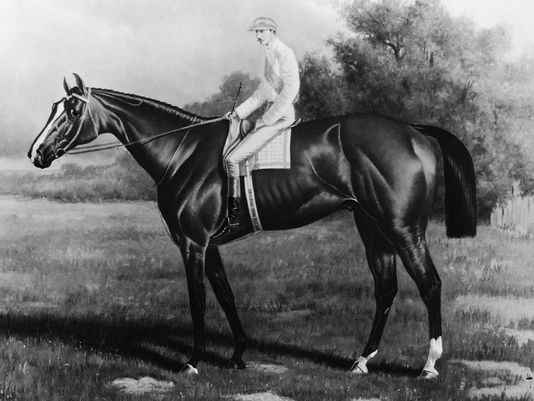 Engraving of 1883 Kentucky Derby winning horse, Leonatus. / Source: Churchill Downs, Inc. & Kinetic Corporation.