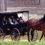 El mito de los Amish y el Autismo