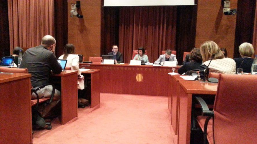Compareixença davant de la Comissió d'Infancia del Parlament de Catalunya
