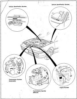 honda prelude engine bay diagram