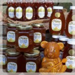 Autumn Harvest Honey w bear square_Fotor