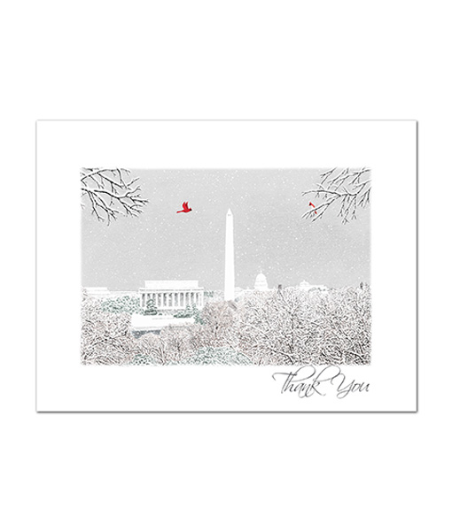 TY-16 DC Scene - thank you notes - 8 blank cards with envelopes