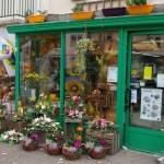 Fleurs de Toussaint vitrine
